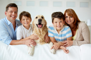 Stress free family & pet